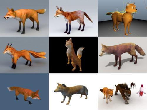 10 مجموعة نماذج Animal Fox 3D