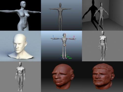 10 Lowpoly Modelos 3D de caracteres básicos de malla