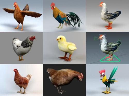 9 نماذج واقعية الدجاج 3D