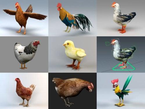 Colección de modelos 9D de pollo realista 3