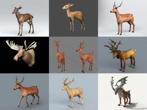 15 realistista Deer 3D -mallia, korkealaatuinen kokoelma