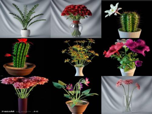 15 realistista kukkaruukussa ilmaista 3D-mallikokoelmaa