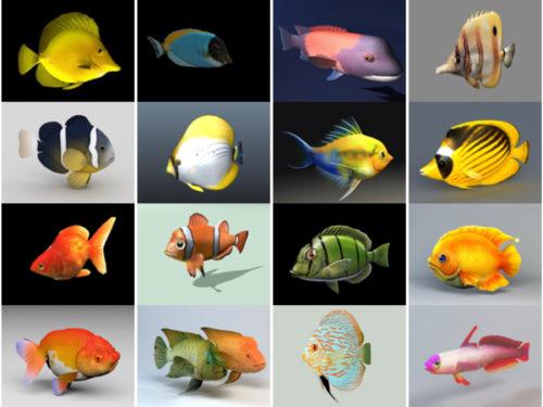 20 realistista akvaariokalaa ilmaista 3D-mallia