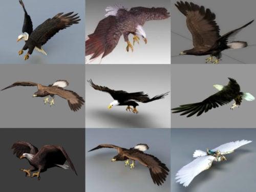 Colección de 20 modelos realistas de águila 3D