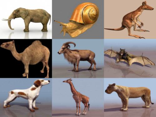 أفضل 12 نموذجًا ثلاثي الأبعاد خالٍ من الحيوانات - الأسبوع 3-2020