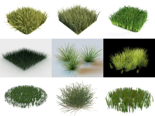 Top 15 Realistic Grass 3D Models Collection