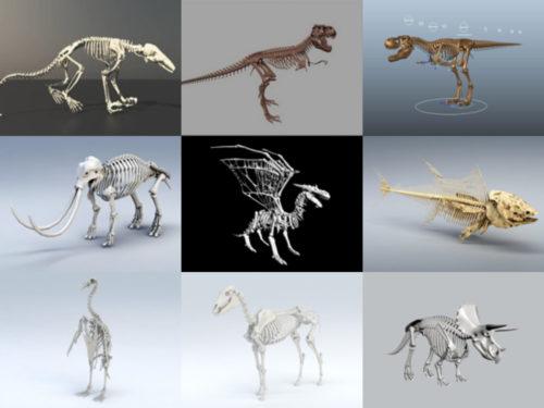 10 eläinten luuranko ilmaista 3D-mallikokoelmaa