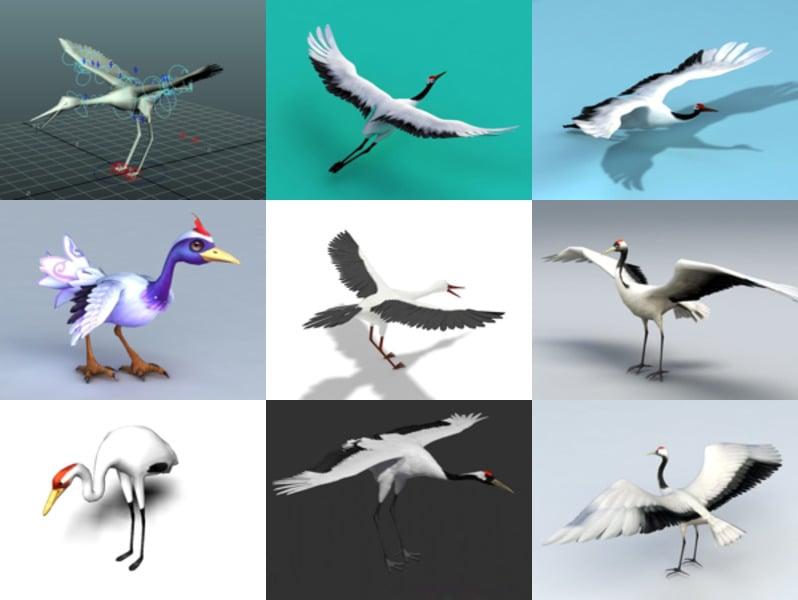 10 مجموعة نماذج Crane Bird Free 3D