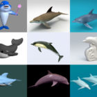 10 Dolphin 3D Models Collection – Week 2020-44