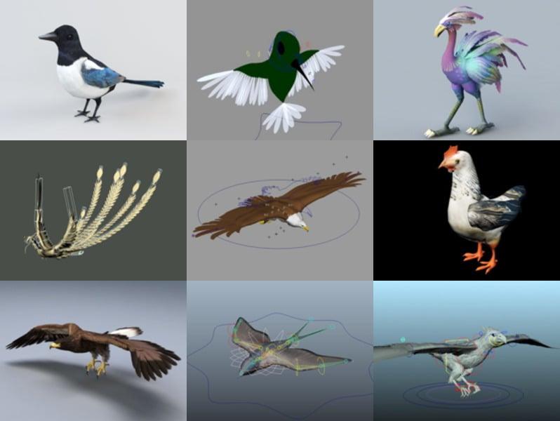 10 eläinlintu Rigged 3D-mallit - viikko 2020-43