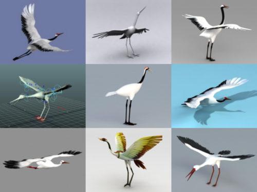 10 modelos 3D realistas sin animales de grúa