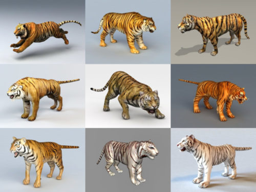 10 Realistic Tiger Free 3D Models – Week 2020-41