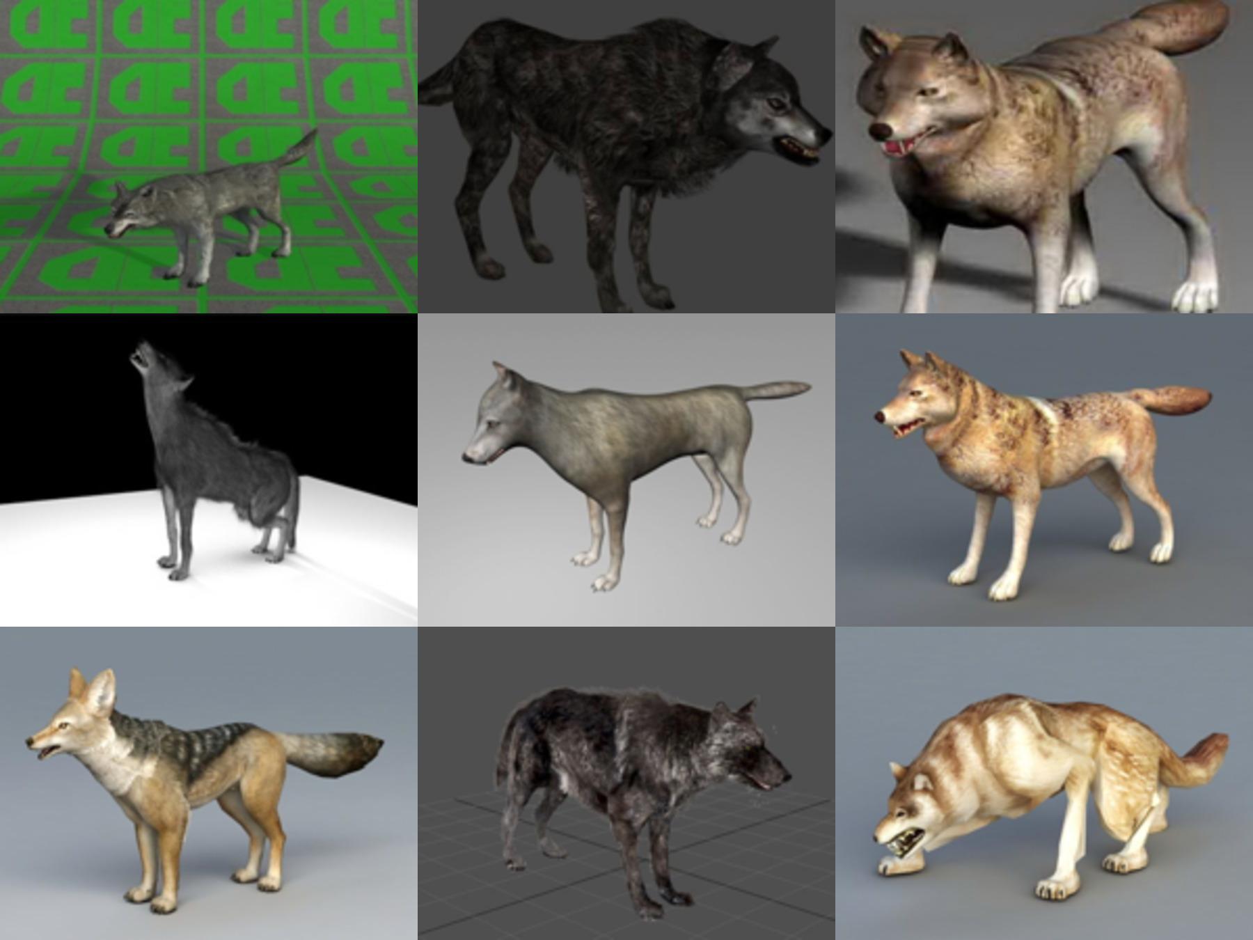 10 realistista susi ilmaista 3D-mallia