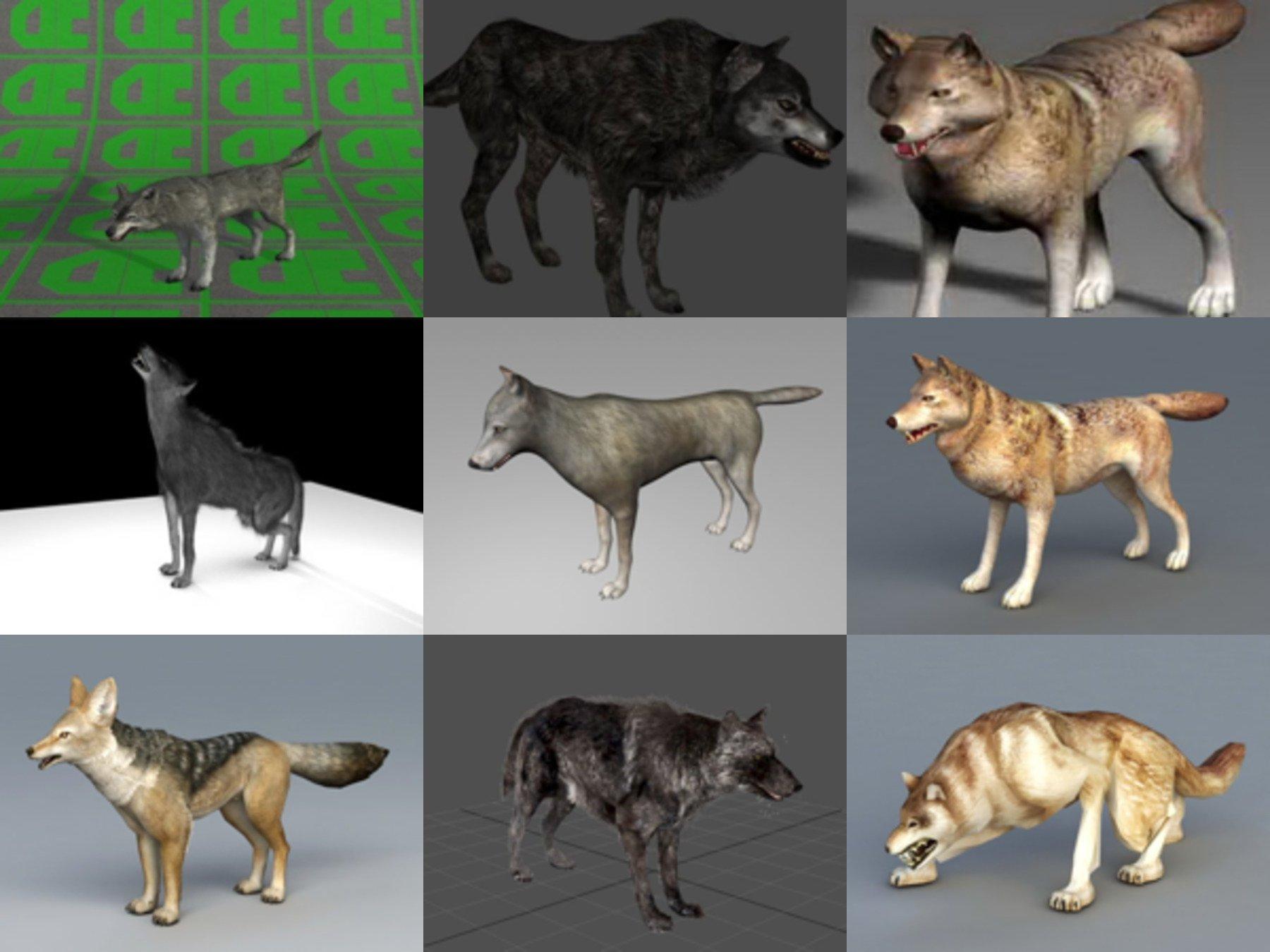 10 Realistic Wolf Free 3D Models