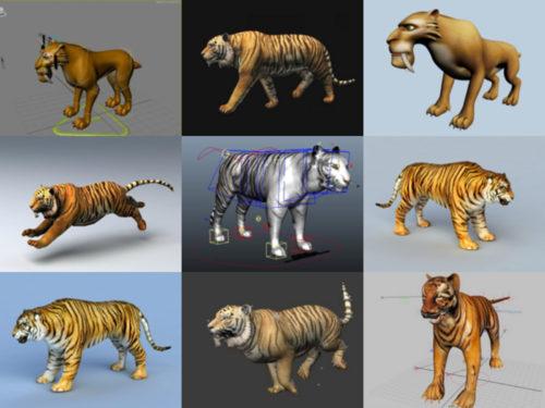 10 النمر Rigged نماذج ثلاثية الأبعاد مجانية - الأسبوع 3-2020