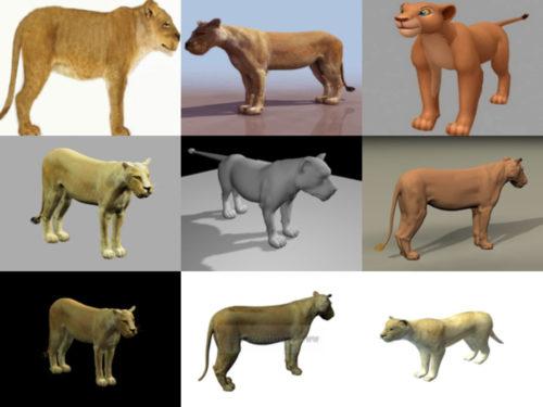 9 Colección de modelos 3D sin leona