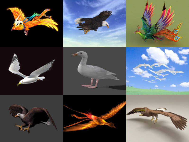 Collection 12 Bird Animation Free 3D Models – Week 2020-43