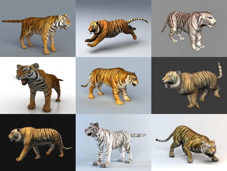 Descargar 9 modelos 3D realistas de tigre animal - Semana 2020-43