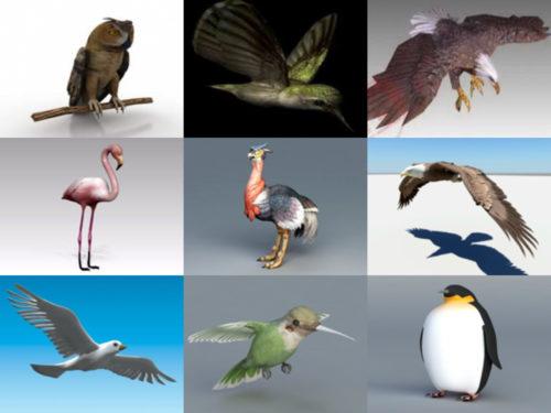 Los 10 mejores modelos 3D sin aves Animal - Semana 2020-41