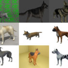 Top 10 Obj Dog 3D Models – Day 21 Oct 2020