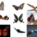 Top 12 Butterfly Free 3D Models Animal – Week 2020-44