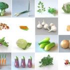 20 realistiske grøntsagsfri 3D-modeller