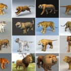 20 Realistic Animals Free 3D Models: Asia Tigers, African Lions, with Realistic Style & High Detailed