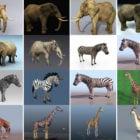 20 Realistisch 3ds Max Tierfreie 3D-Modelle: Elefant, Zebra, Giraffe, Nashorn
