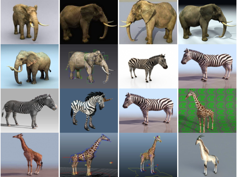20 Realistic 3ds Max Animal Free 3D Models: Elephant, Zebra, Giraffe, Rhino