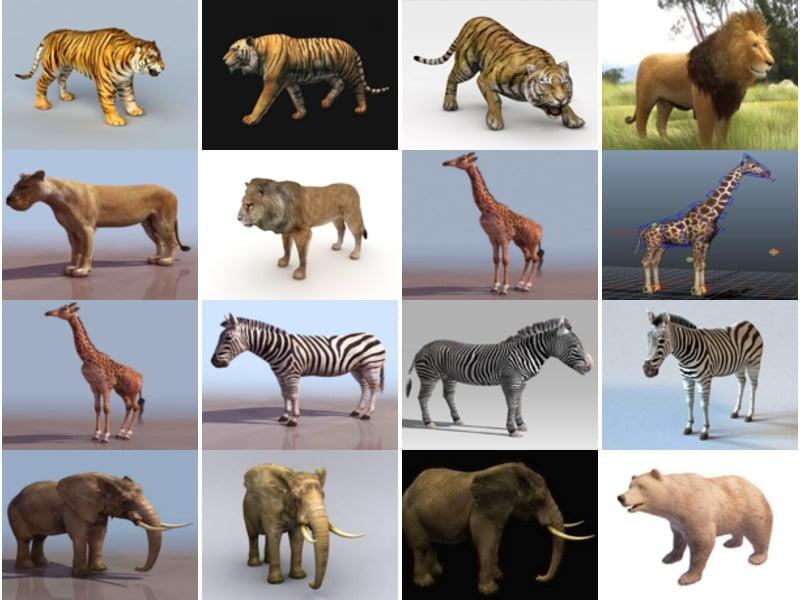 20 Realistic Land Animal Free 3D Models: Tiger, Lion, Giraffe, Zebra, Elephant, Bear