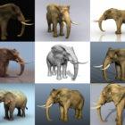 Скачать 10 реалистичных животных-слонов бесплатно 3D-моделей - Детализированное 3D-животное