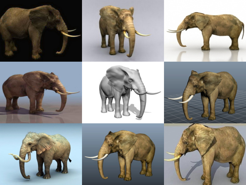 Download 10 Realistic Elephant Animal Free 3D Models – High Detailed 3D Animal